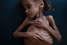 Senators, Furious Over Khashoggi Killing, Spurn President on War in Yemen