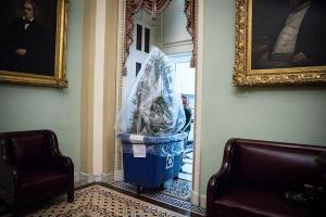 On Capitol Hill, a Fittingly Chaotic End to a Tumultuous Year