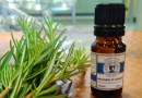 Herbal Studies 101: What Is Rosemary Good For? | ACHS