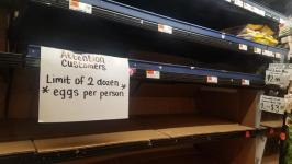 Egg prices triple in three weeks amid panic shopping