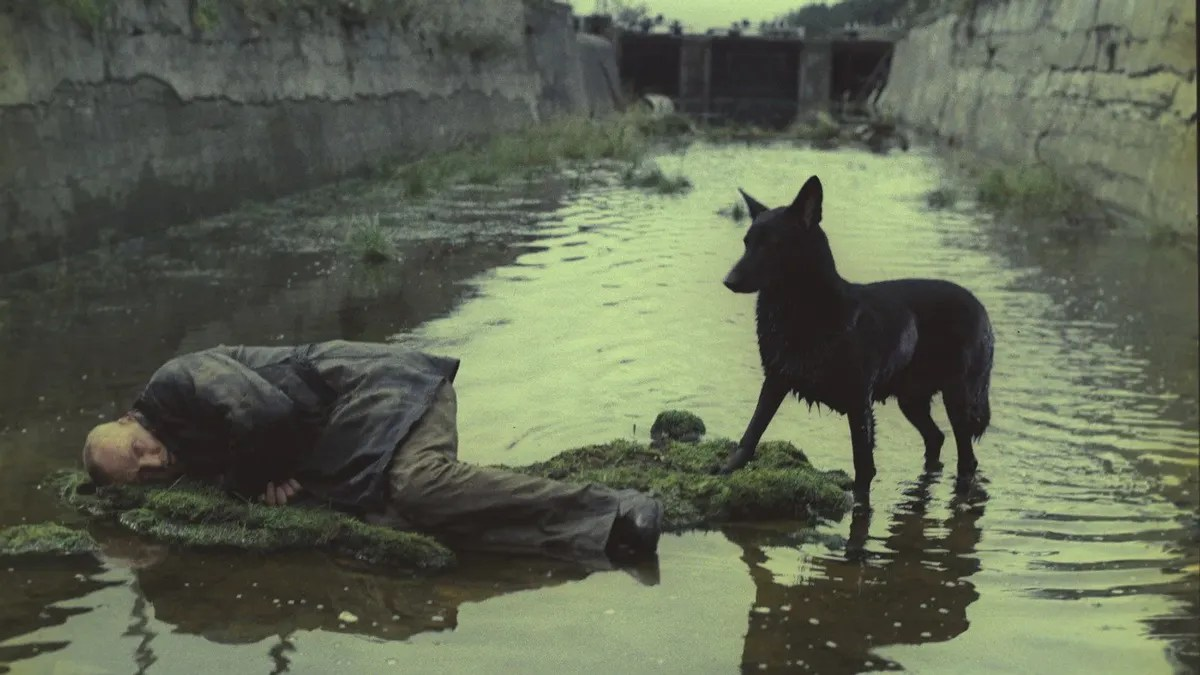 """Why Andrei Tarkovsky's interminably dull 1979 sci-fi masterpiece """"Stalker""""  is the movie we need right now 