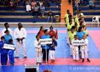 Open Caraïbe Karaté 2017 (1)