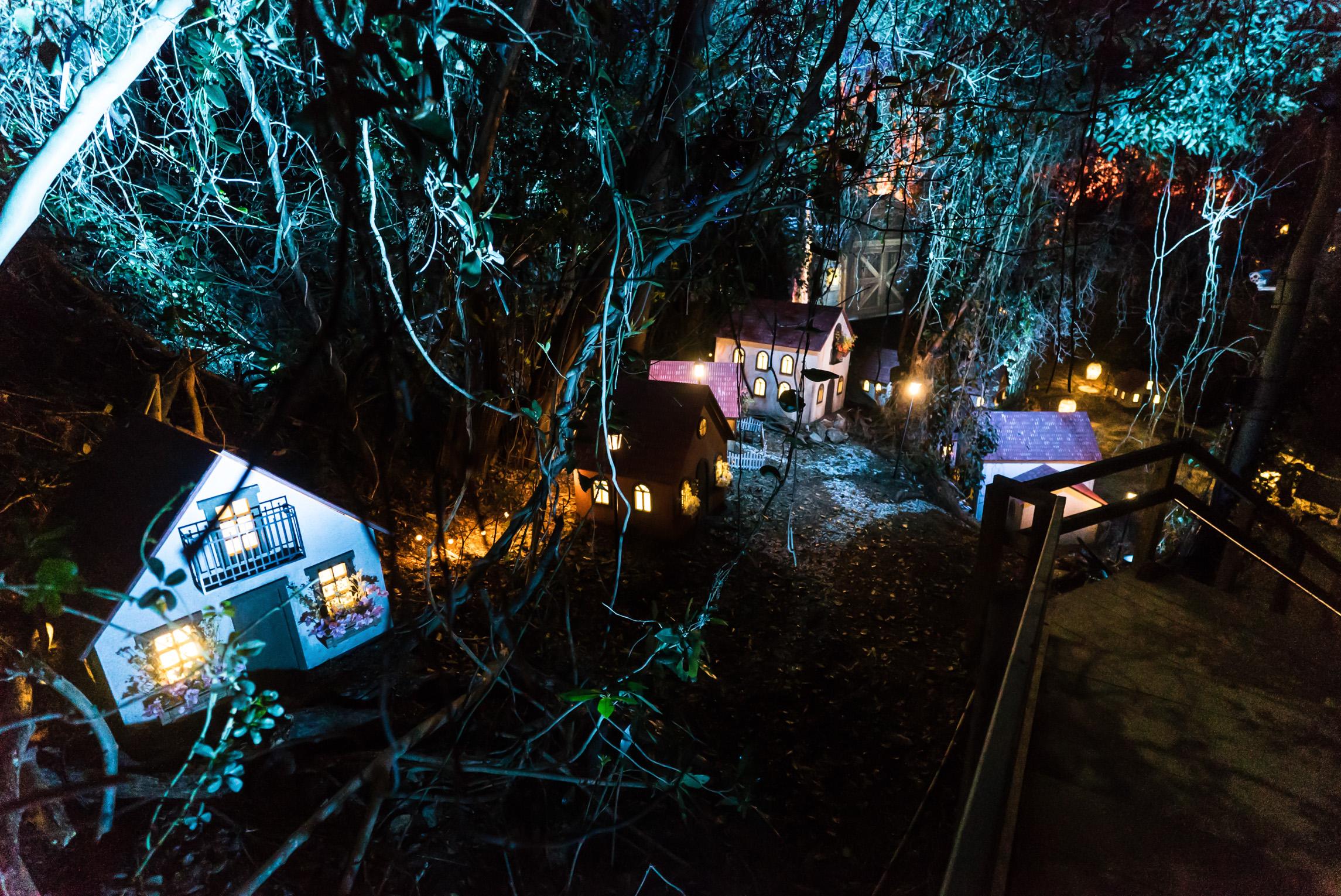 Island Lumina a multimedia night walk  Moment Factory