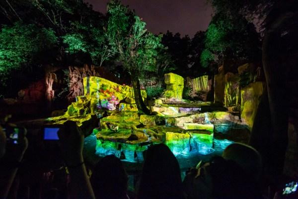 Rainforest Lumina Multimedia Night Walk Wild