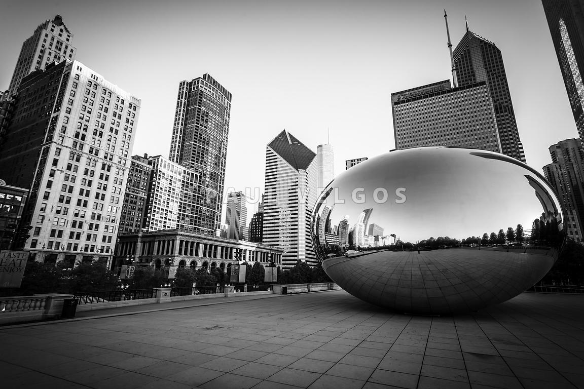 Image Chicago Bean And Chicago Skyline In Black And White