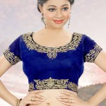 Hand Embroidered Velvet Blouse In Royal Blue Uew16