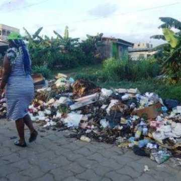 Environnement : Le Gabon crée un Haut-commissariat à l'environnement