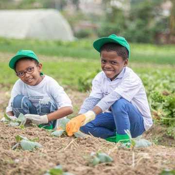 L'EDUCATION NUTRITIONNELLE S'INVITE DANS LES ÉCOLES PRIMAIRES.