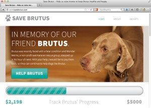 The Save Brutus campaign uses the Fundraising plug-in for WordPress, from WPMU DEV
