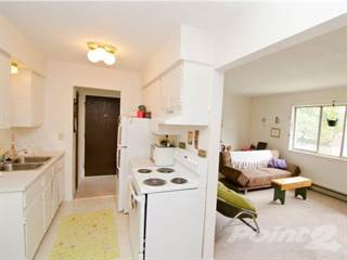 One Bedroom Apartment Alt 4 Apartments In East Lansing Mi