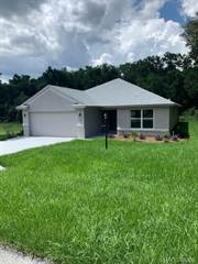 Citrus County Homes For Sale By Owner : citrus, county, homes, owner, Homes, Citrus, County,, Listings, Point2