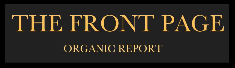 MediaVizual.com best online organic marketing: Va SEO Report