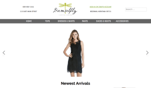 Mediaworks Website Design Bozeman Montana_Damselfly
