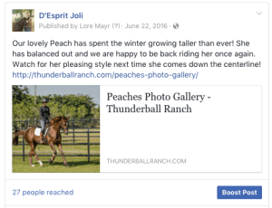 Facebook Posting and Ad creation for Bozeman Ranch
