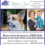 Newspaper ad design for Bozeman Photography Business Advertising
