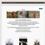 wordpress e-commerce website design