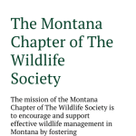 responsive wordpress website design for montana organziation