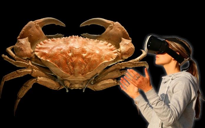 VR, Cancer