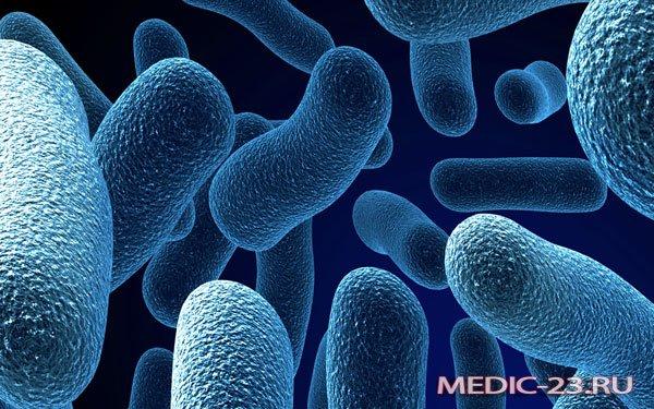 Инфекция в организме