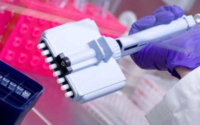 Oznaczenie poziomu p/ciał IgG i IgM przeciw wirusowi odry – wynik i badanie tego samego dnia