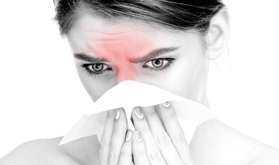 Nowy panel alergologiczny – 54 alergeny