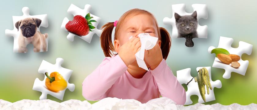 Osiem nowych paneli alergicznych w ofercie MEDICA