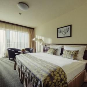 غرفة سريرين - مصح شجرة الحياة