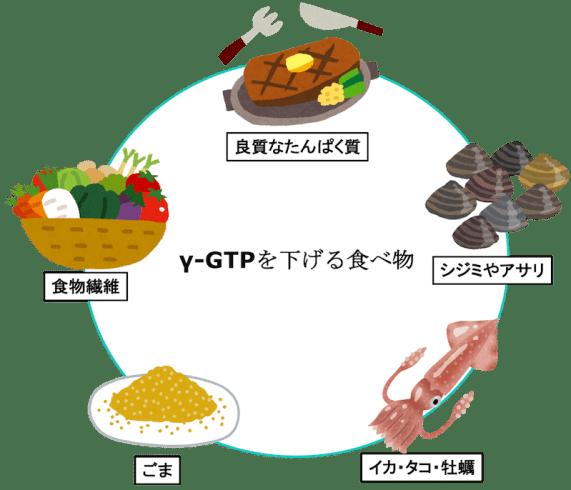 γGTP figure1