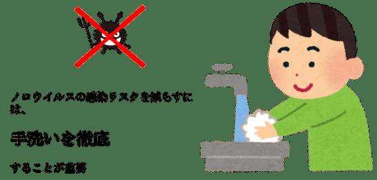 noro virus hand wash