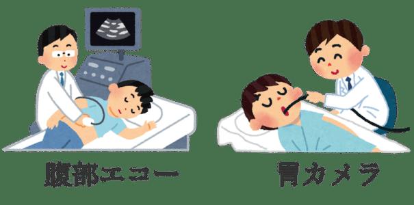 abdominal echo and fiber