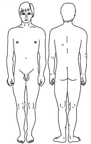 Male Front and Rear View | Diagram | Patient