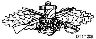 Figure 12-8.Seabee Combat Warfare Specialist Insignia.