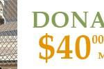 donate40
