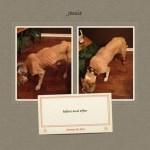 Jessie, Boxer-Shepherd mix - Medical Animals In Need (13)