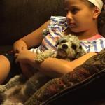 Teddy in foster
