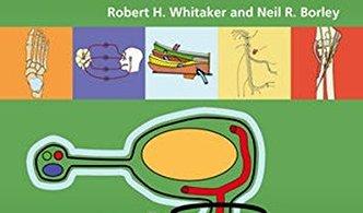 Instant Anatomy 5th Edition PDF