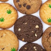 how to make dagga cookies
