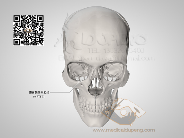 Skull_with_e-PTFE_HDRStudioRig01-watermarked
