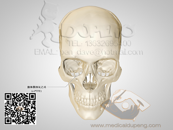Skull_with_e-PTFE_HDRStudioRig01_01_watermarked