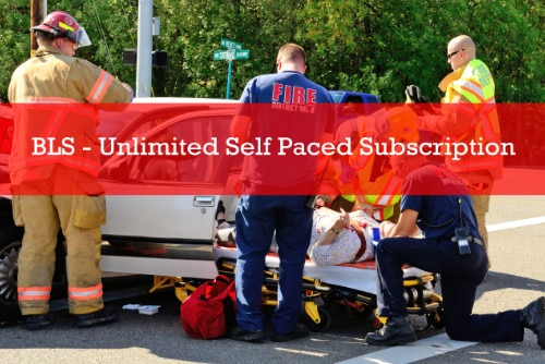 BLS - Unlimited Self Paced Subscription -2 Years