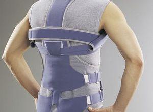 корсет, позвоночник, мышца, осанка, шина, фиксация, период