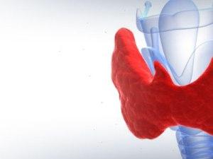 щитовидная железа, болезнь Альцгеймера, память