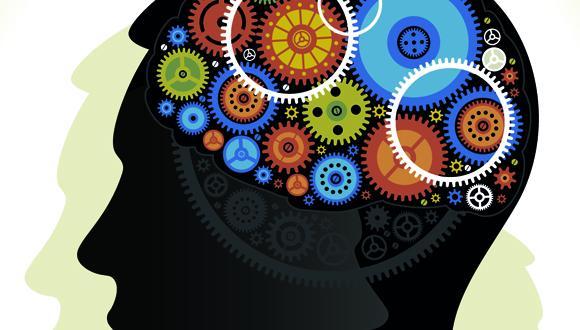 координация, мозг