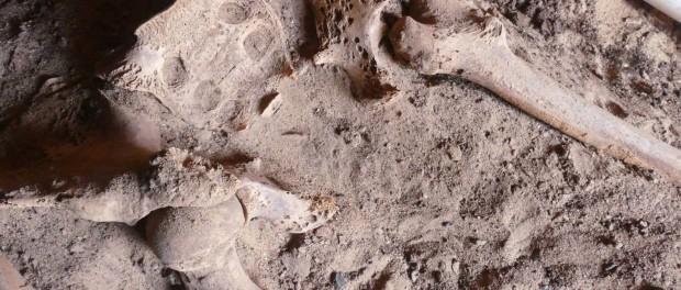 рак молочной железы, Египет, мумия