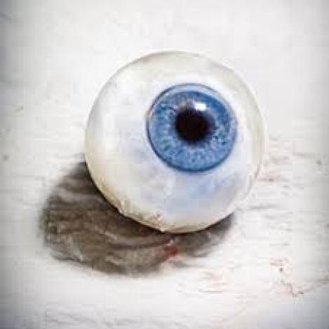 эволюция, глаз, трансдуцины, рыбка-данио