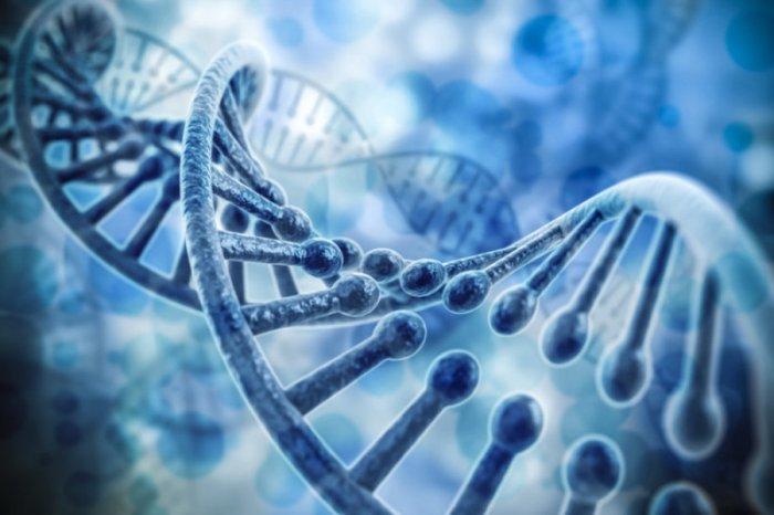 гены, сахарный диабет, аутоиммунные заболевания