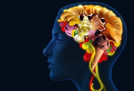 питание, мозг