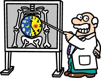 биологические часы, иммунитет