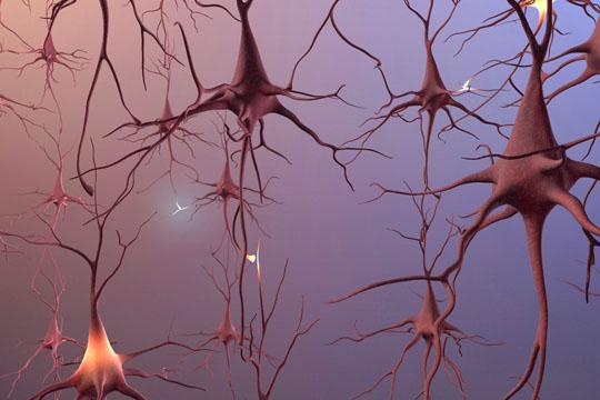 болезнь Альцгеймера, трансплантология
