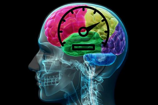 спидометр, головной мозг, гиппокамп